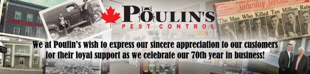 Poulins 70th Anniversary Banner