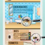 7 Common Household Pests