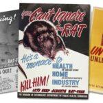 alberta-rat-control-posters